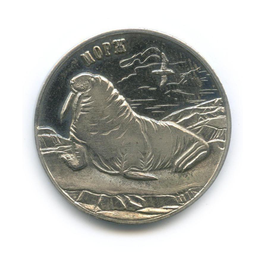 Жетон «25 рублей - Морж - Шпицберген, Арктикуголь» 2013 года (Россия)