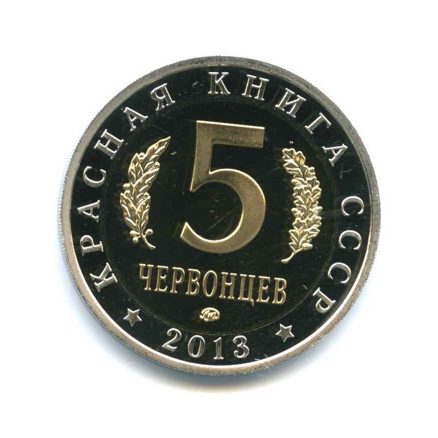 Жетон «5 червонцев 2013 - Красная книга СССР - Жук-олень» ММД (Россия)