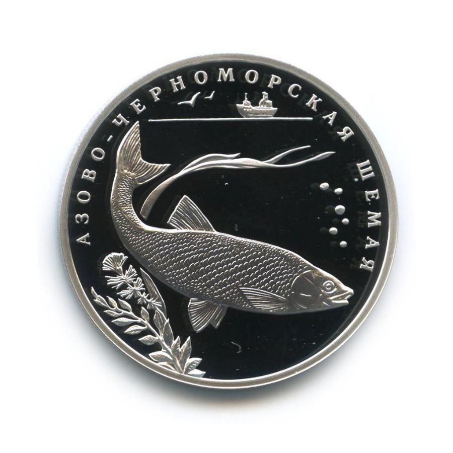 2 рубля — Красная книга - Азово-черноморская шемая 2008 года (Россия)