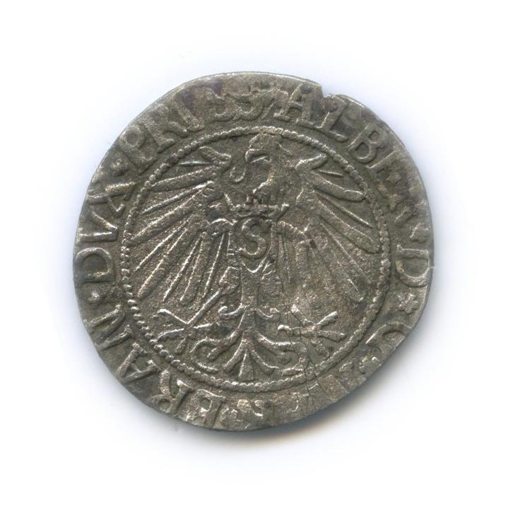 Грош - Альбрехт, Пруссия 1543 года