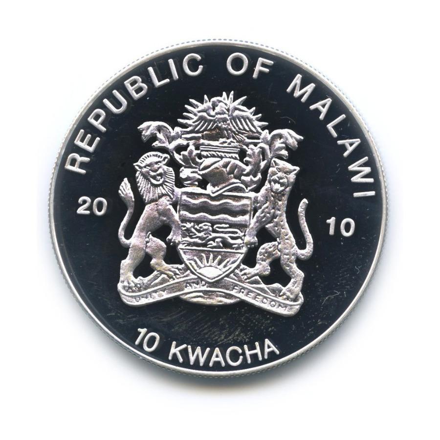 10 квача - Лягушки, находящиеся под угрозой исчезновения - Пурпурная лягушка, Малави (серебрение, цветная эмаль) 2010 года