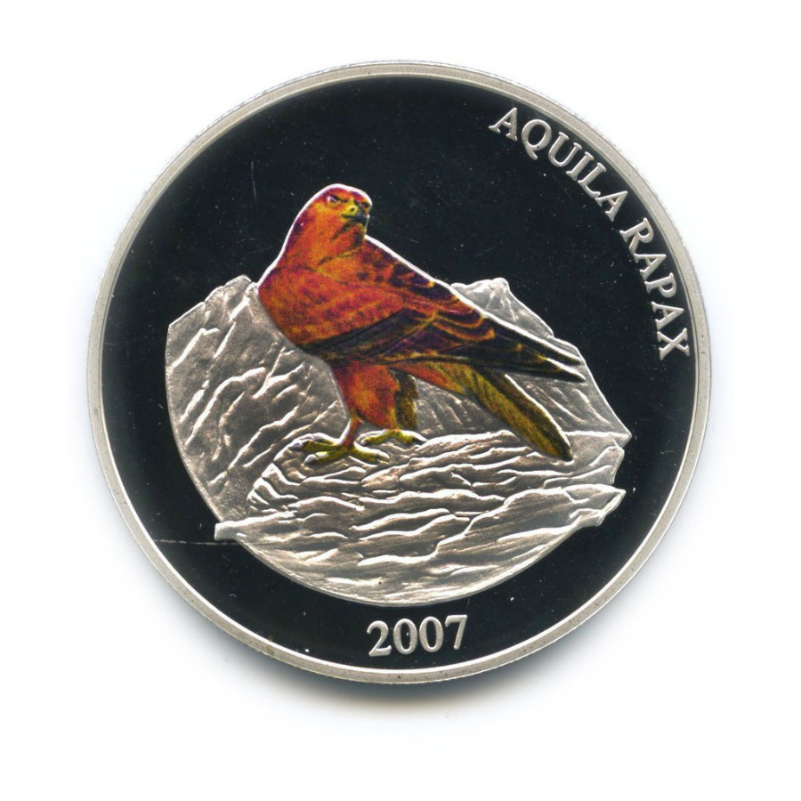 500 тугриков - Степной орел (с сертификатом) 2007 года (Монголия)