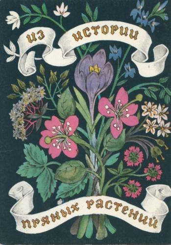 Набор открыток «Изистории пряных растений» (16 шт.) 1983 года (СССР)