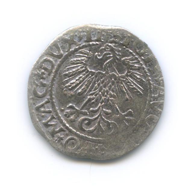 Полугрош - Сигизмунд II Август, Великое Княжество Литовское 1561 года