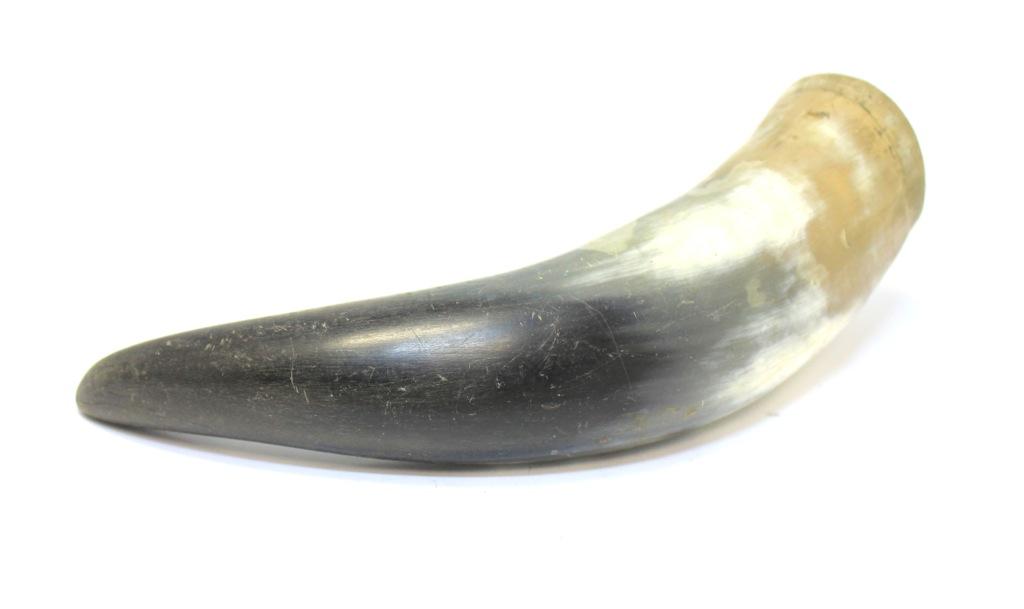 Рог натуральный (23 см)