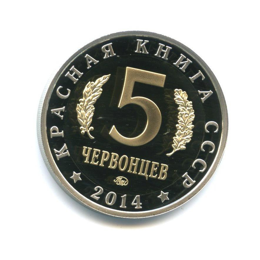 Жетон «5 червонцев 2014 - Красная книга СССР - Сахалинская кабарга» (копия) ММД (Россия)
