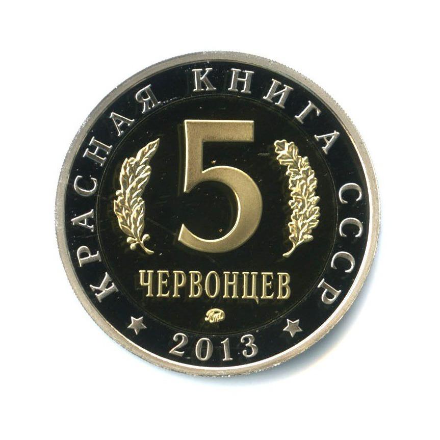 Жетон «5 червонцев 2013 - Красная книга СССР - Жук-олень» (копия) ММД (Россия)