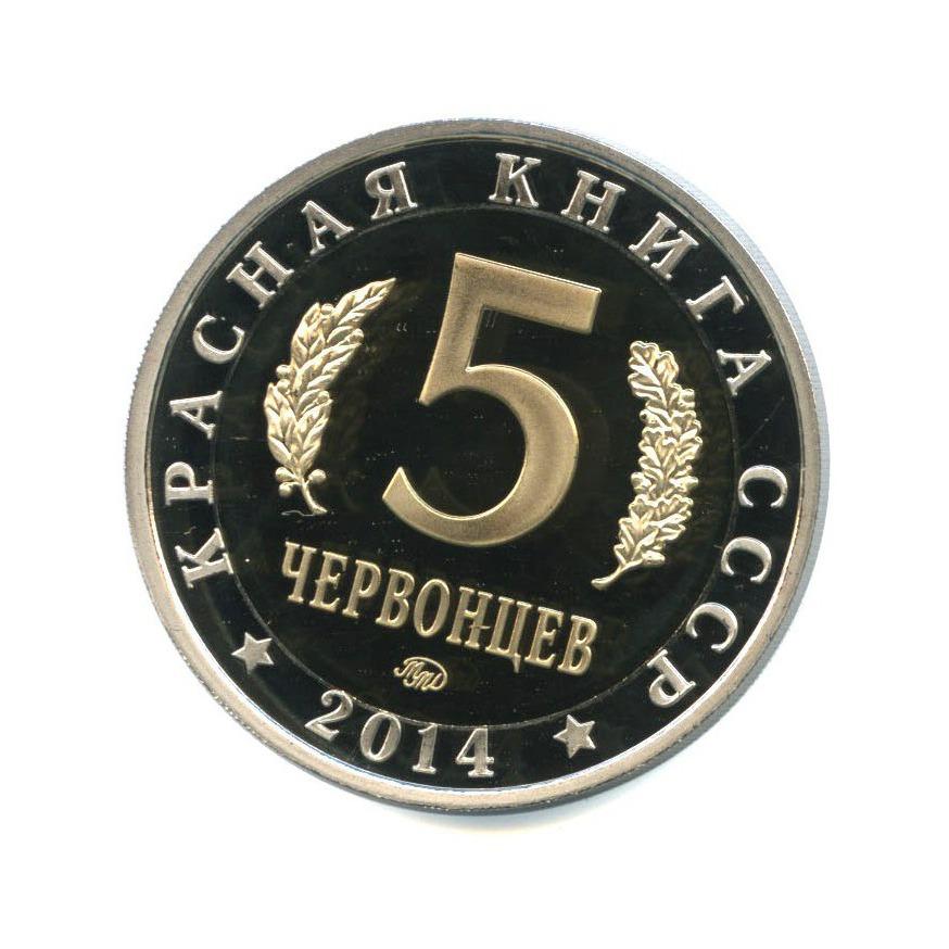 Жетон «5 червонцев 2014 - Красная книга - Гигантская Вечерница», копия 2014 года ММД (Россия)