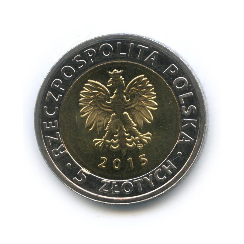 5 злотых - Быдгощский канал 2015 года (Польша)
