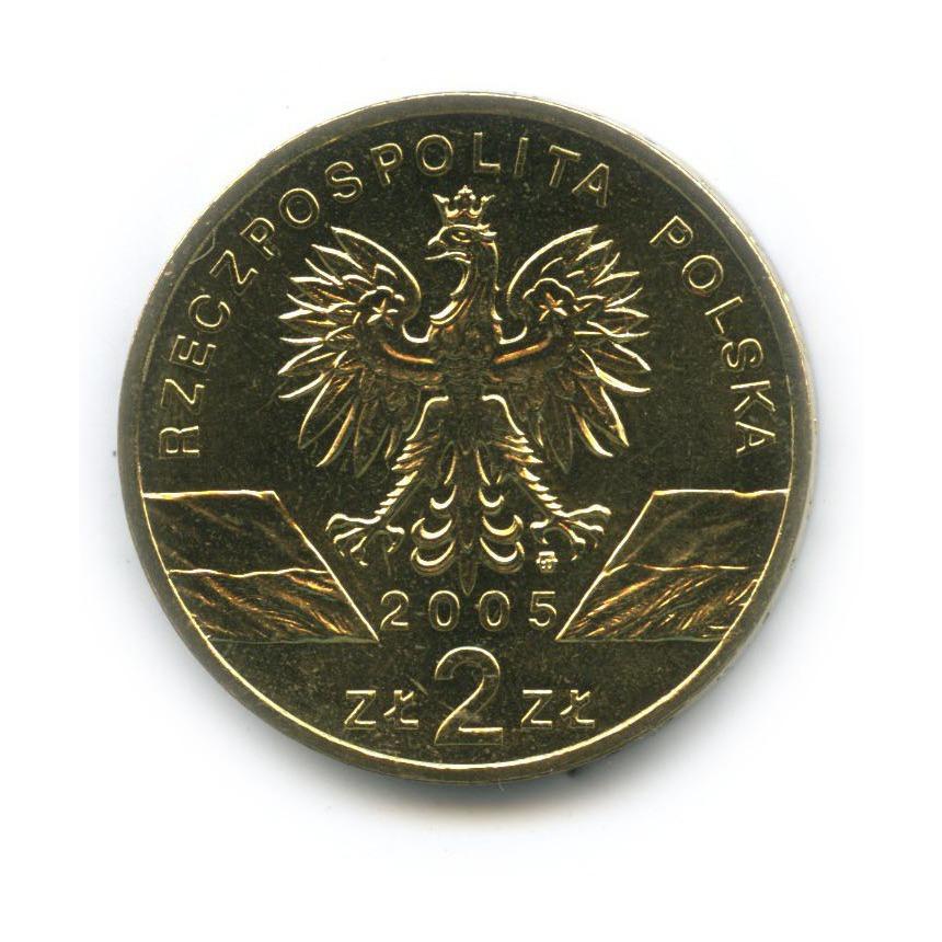 2 злотых — Всемирная природа - Филин 2005 года (Польша)