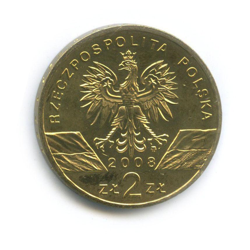 2 злотых — Всемирная природа - Сапсан 2008 года (Польша)