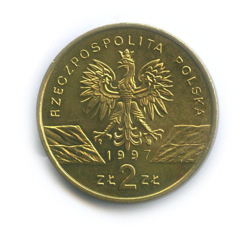2 злотых — Всемирная природа - Жук-олень 1997 года (Польша)