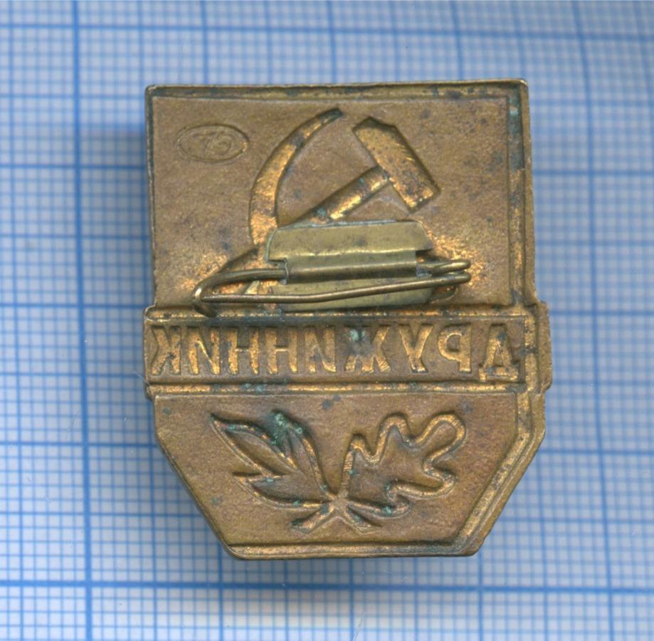 Знак «Дружинник» (СССР)
