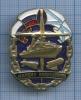 Знак «Корабль «Маршал Василевский» (Россия)
