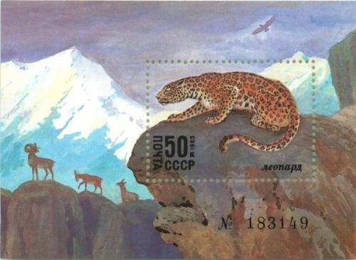 Марка почтовая (номерная) «Леопард» 1985 года (СССР)