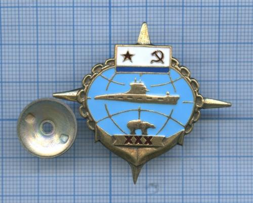 Знак «30 лет Подводному флоту» (Россия)