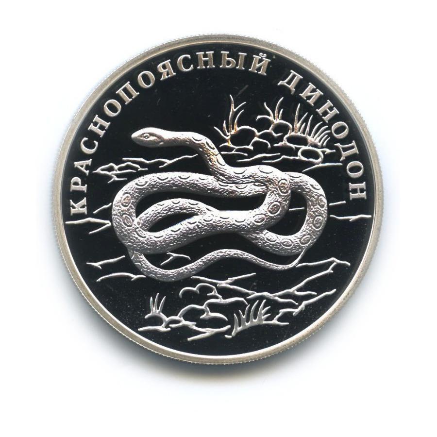 1 рубль — Красная книга - Краснопоясный динодон 2007 года (Россия)