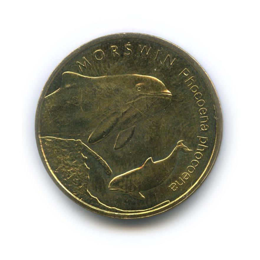 2 злотых — Всемирная природа - Морская свинья 2004 года (Польша)