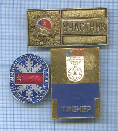 Набор знаков «Зимняя спартакиада народов СССР» (СССР)