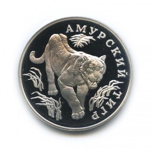 1 рубль — Красная книга - Амурский тигр 1993 года (Россия)