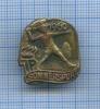 Знак «Sommersport - Пионерская организация имени Эрнста Тельмана» 1960 года (Германия)