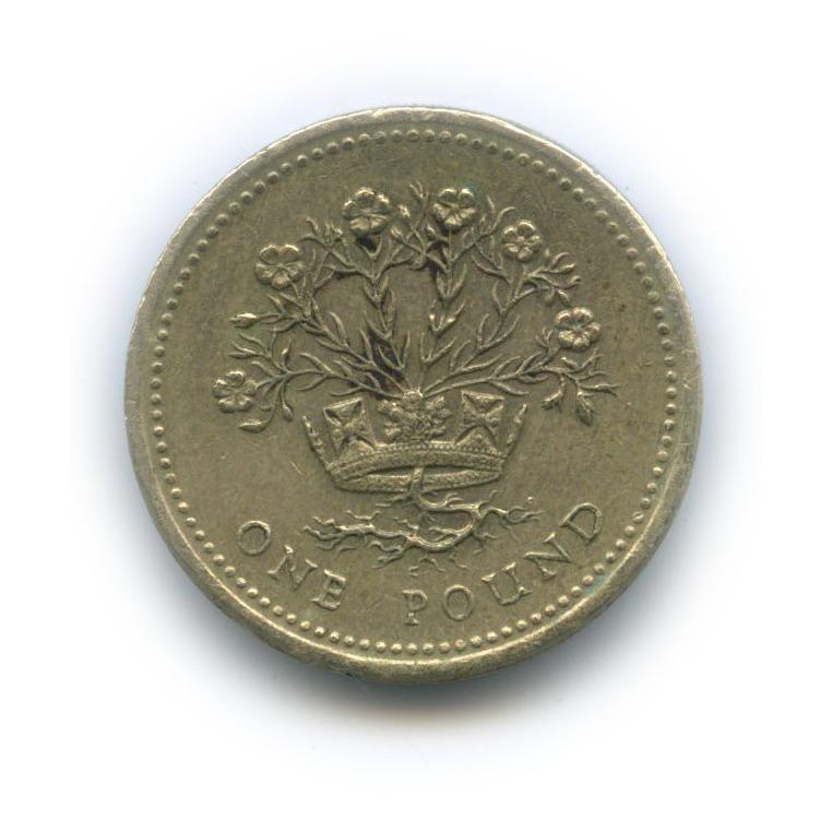1 фунт 1991 года (Великобритания)