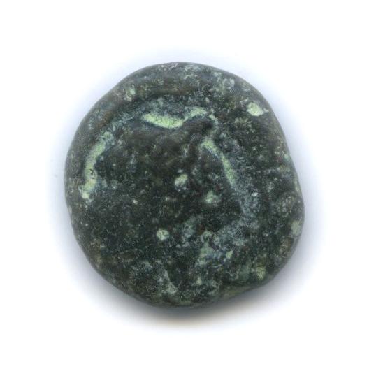 Сиракузы, IV в. до н. э., Аретуза/осьминог