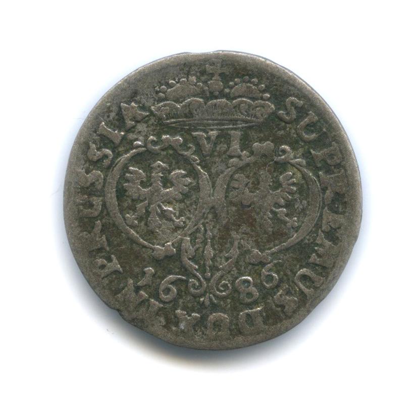 6 грошей (шостак) - Фридрих Вильгельм I, Пруссия 1686 года