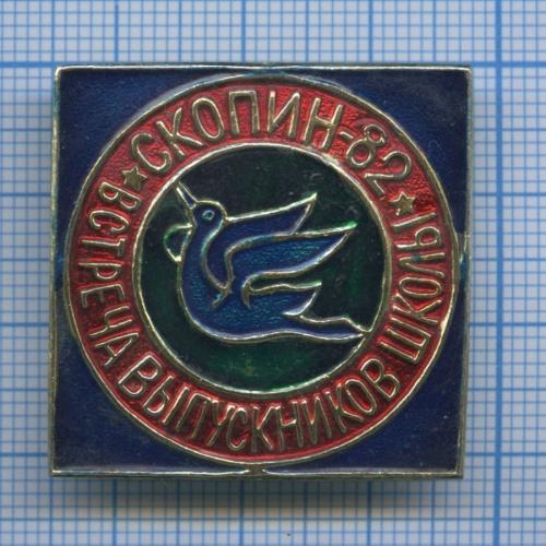 Знак «Встреча выпускников школы «СКОПИН-82» 1982 года (СССР)