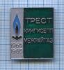 Знак «Трест «КИНГИСЕППМЕЖРАЙГАЗ 1965-1985» 1985 года (СССР)