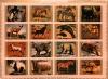 Набор почтовых марок (Умм-аль-Кувейн) (ОАЭ)