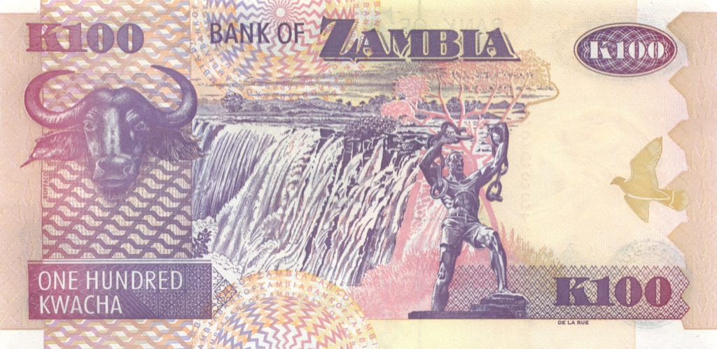 100 квач (Замбия) 2008 года