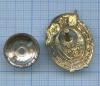 Знак нагрудный «ВУСССР» (СССР)