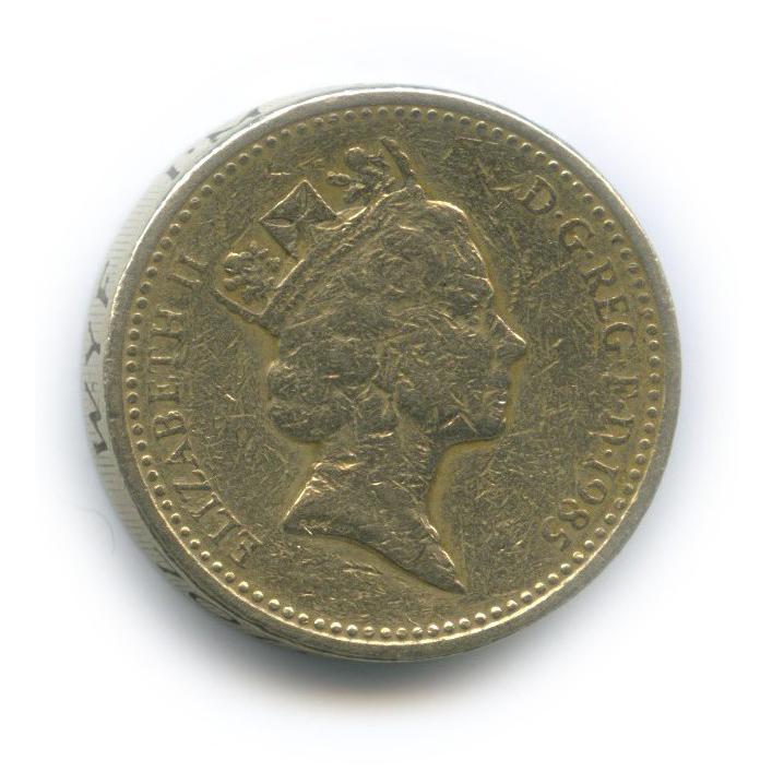 1 фунт - Геральдическое растение Уэльса (Лук-поррей) 1985 года (Великобритания)