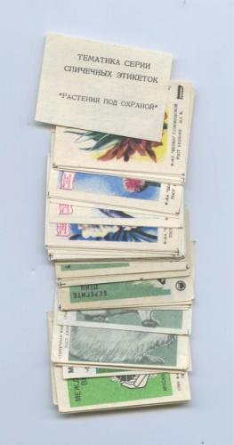 Набор спичечных этикеток (≈ 60 шт.) (СССР)