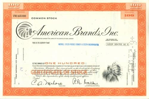 100 акций «American Brands, Inc» (США)