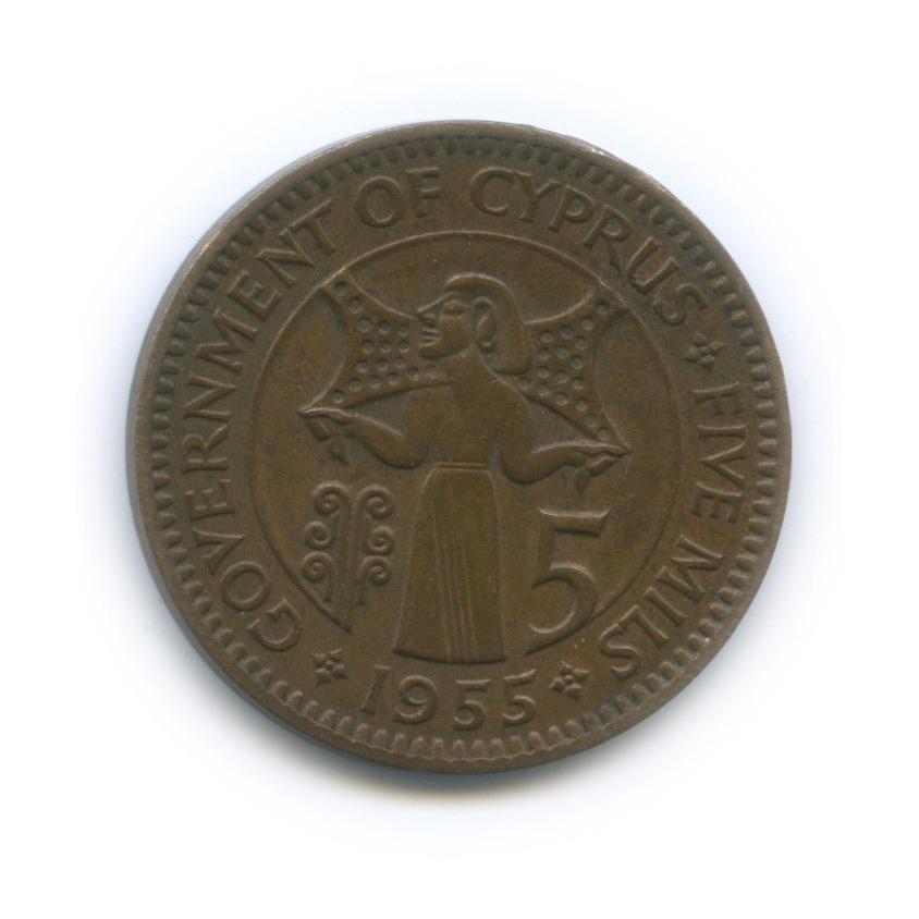 5 мил 1955 года (Кипр)