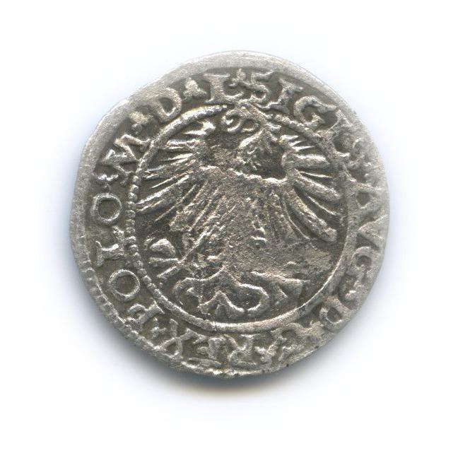 Полугрош - Сигизмунд III, Великое Княжество Литовское 1563 года