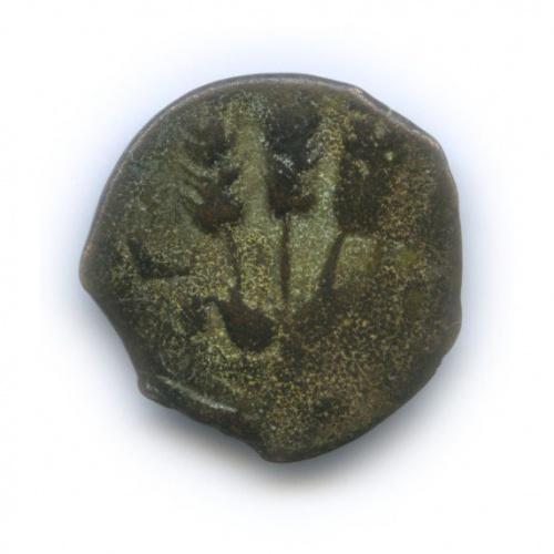 АЕпрута - Ирод Агриппа I, 41-42 гг., Иудея