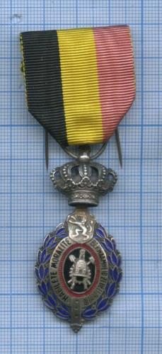 Медаль «За трудовое отличие» (Бельгия)