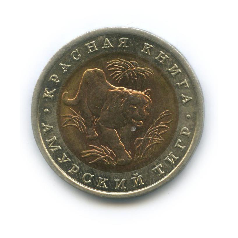 10 рублей — Красная книга - Амурский тигр 1992 года (Россия)