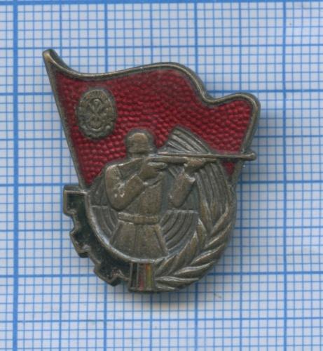 Знак «Стрельба извинтовки», 3-я степень (Германия)
