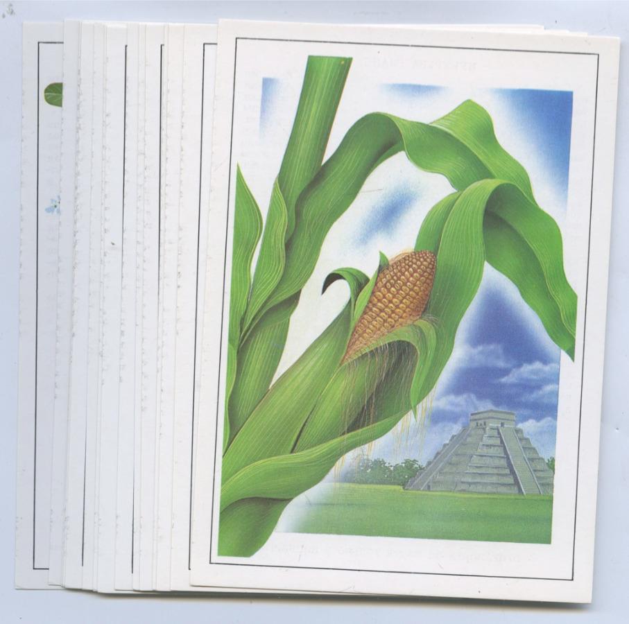 Хорошо деревне, набор открыток растения переселенцы 1988